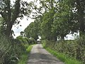 Road past Bodowyr-isaf Farm - geograph.org.uk - 892126.jpg