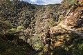Rogue River & Rainie Falls Trail (34869012501).jpg