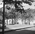 Rolschaatsen in klooster St Jozef met zusterschool van de zusters van Schijndel, Bestanddeelnr 252-7571.jpg