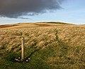 Rough grazing south of Ewe Hill - geograph.org.uk - 640881.jpg
