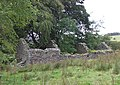 Ruined Farmstead, Nant Carfan, Ceredigion - geograph.org.uk - 565614.jpg