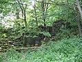 Ruins of Coverham Low Mill - geograph.org.uk - 439781.jpg