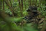Rumble in the Jungle, 1st Recon Marines train in Hawaii 151121-M-KM305-023.jpg