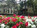 Rutgers University College Avenue campus flowers on main campus.jpg