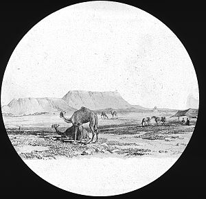 Susa - Assyria. Ruins of Susa Brooklyn Museum Archives, Goodyear Archival Collection