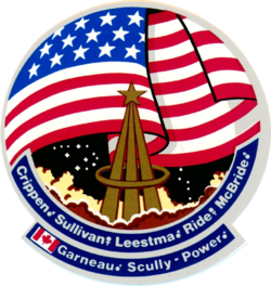 STS-41-G patch.png