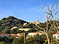 Sainte-Lucie-de-Tallano village.jpg