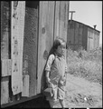 San Lorenzo, California. A farm youngster pictured two days before evacuation of persons of Japanes . . . - NARA - 537538.tif