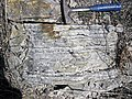 Sandstone (Middle Pennsylvanian; Frazeysburg Pit, Muskingum County, Ohio, USA) 4 (27409632387).jpg