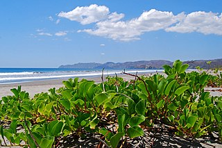 La Cruz (canton) canton in Guanacaste province, Costa Rica