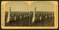 Scene of the Custer Massacre, Little Big Horn, Wyoming, from Robert N. Dennis collection of stereoscopic views.png