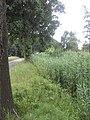 Schaijk buitengebied - panoramio (1).jpg