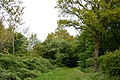 Schleswig-Holstein, Quickborn, Geotop Ka 006 NIK 3805.jpg