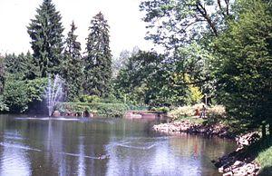 Hückeswagen - Swan pond at castle Hueckeswagen