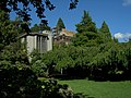 Seattle - looking up from Parsons Gardens.jpg