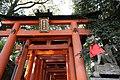 Sembon Torii Fushimi Inari Taisha 171206 (25260741488).jpg