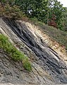 Semi-anthracite coal (Merrimac Coal, Lower Mississippian; Cloyds Mountain roadcut, Valley Coalfield, Virginia, USA) 8 (30407960331).jpg