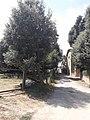 Serinyà - 20200802 130204.jpg
