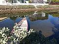 Sherman Canal in Venice, California - 2013-12-30 12.23.14.jpg