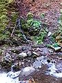 Shypit waterfall (Oct 2018) 3.jpg