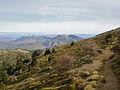 Sierra de las Nieves 04.jpg