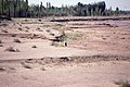 Silk Road 1992 (4367627015).jpg