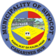 Official seal of Sipocot