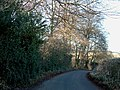 Smalldean lane at the top of Bradenham Wood - geograph.org.uk - 92766.jpg