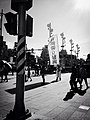 Snapshot, Taipei, Taiwan, 隨拍, 台北, 台灣 (14577051347).jpg