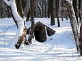 Snow14Slovakia6.JPG
