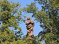 Socha na morovém sloupu, Masarykovo náměstí, Jihlava.jpg