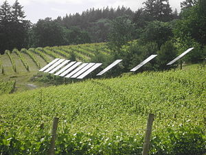 Green New Deal - Green New Deal - Sustainable agriculture combined with the generation of renewable energy