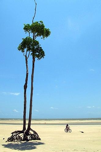 Marajó Archipelago Environmental Protection Area - Image: Soure Beach, Isla Marajo (Para, Brasil)