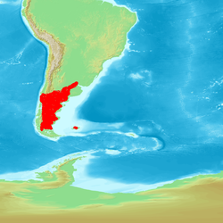 South America Coscoroba.png