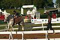 Spectacle équestre Bernard Quental Sofie Agnoux Nathalie Barot Mondial du percheron 2011 CL J Weber09 (23975231082).jpg