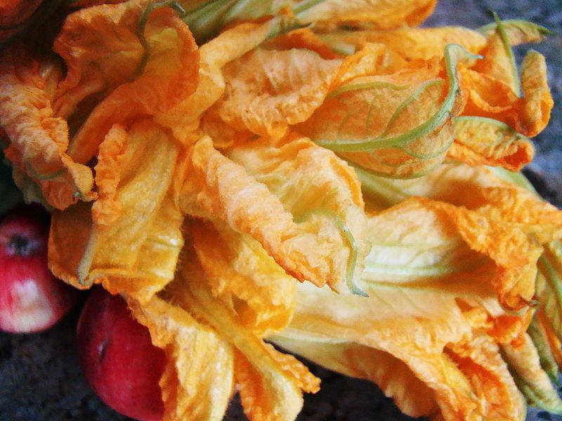 File:Squash Blossoms (4142957496).jpg