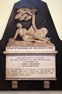 John Gilbert (naturalist) English naturalist and explorer