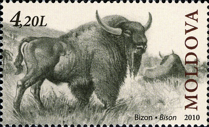 File:Stamps of Moldova, 2010-39.jpg