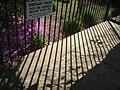 Stanley Park of Westfield - Westfield, MA - IMG 6507.JPG