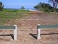 Starr-040125-0047-Nicotiana glauca-view-Kanaha Beach-Maui (24070514563).jpg
