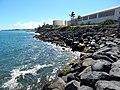 Starr-140311-0078-Cocos nucifera-habitat view MECO and coastline-Kahului-Maui (25214785656).jpg