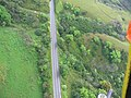 Starr-141014-5120-Caesalpinia decapetala-aerial view Hana Hwy-Kakipi Gulch Haiku-Maui (24879808869).jpg