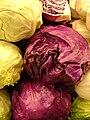 Starr 070730-7854 Brassica oleracea var. capitata.jpg