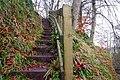 Steps, Glenoe Glen - geograph.org.uk - 639587.jpg