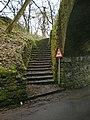 Steps - geograph.org.uk - 1177868.jpg