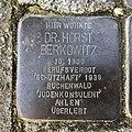 Stolperstein für Horst Berkowitz in Hannover.jpg