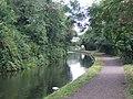 Stourbridge Branch Canal - geograph.org.uk - 871913.jpg