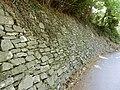 Strada ex guidovia Guardia muro.jpg