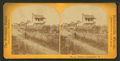 Suburbs of Jacksonville, from Robert N. Dennis collection of stereoscopic views.png