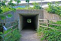 Subway under M27 in line with track of dismantled railway north of Hill Park - geograph.org.uk - 458473.jpg